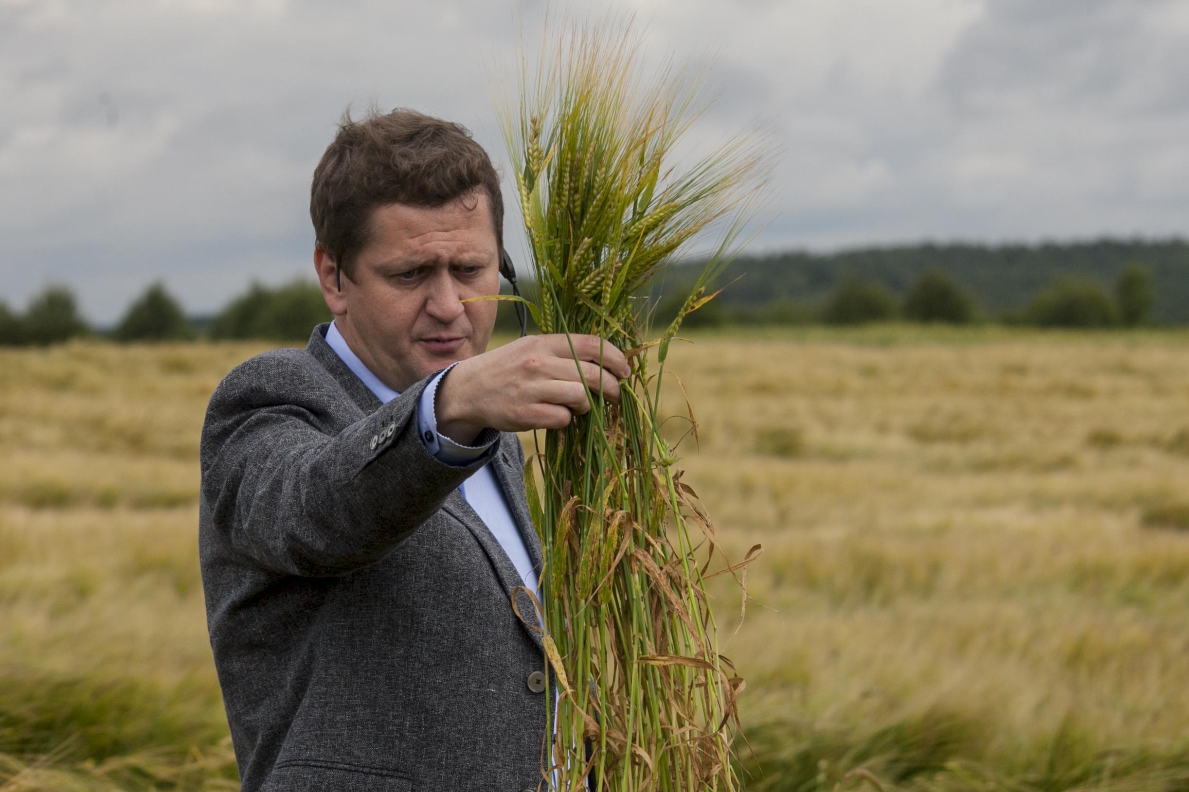 Игорь Матвеев, начальник производства и качества Carlsberg Eastern Europe осматривает урожай